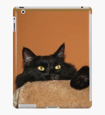 Pooh Bear Peeping  iPad Case/Skin
