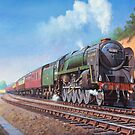 9F on the S and D line. by Mike Jeffries