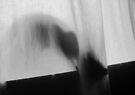 Mikino - Behind the Veil 5 by Jaeda DeWalt