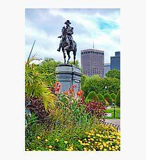 Boston Common Study 6  Photographic Print