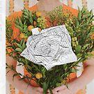 paper bouquet by Tara Lea