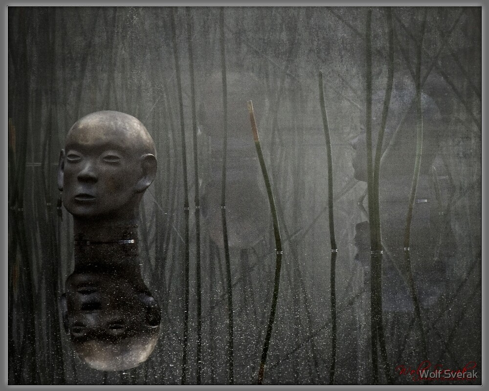 ACT Sculpture Garden by Wolf Sverak