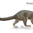 Torrejonia by April Neander