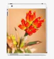 Red Bells iPad Case/Skin