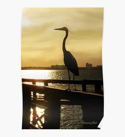 King of the Pier ~ Heron Poster