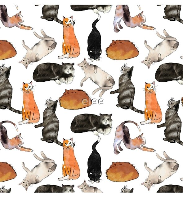 cats, cats, cats on white by elee