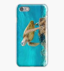 Hovering Green Turtle  iPhone Case/Skin
