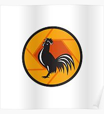 Rooster Crowing Shutter Circle Retro Poster