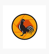 Rooster Crowing Shutter Circle Retro Photographic Print