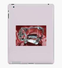 Eeyore in glass.......... iPad Case/Skin