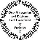 Male Feminist  by Toradellin