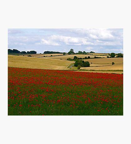 A Cotswold Landscape  Photographic Print
