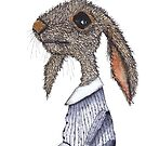 DRESSED HARE by Hares & Critters