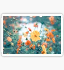 Yellow and orange flowers Sticker