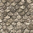 Ancient Roof Tiles by himmstudios