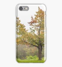 lonely oak in fog iPhone Case/Skin