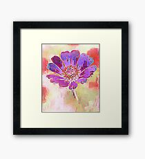Pastel Passion 5 Framed Print