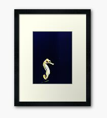 Just a Lil' Seahorse Framed Print