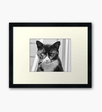 Trapper #2 Framed Print