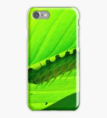 The Very Hungry Caterpillar iPhone Case/Skin
