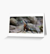 Water Dragon - Colourful Australian Lizard Greeting Card