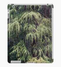 tree in the forest iPad Case/Skin