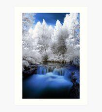 Kerosine creek in infrared 2 Art Print