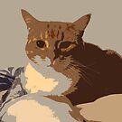 Retro Cat by Collin Scott
