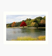 Autumn View of the Mystic River  Art Print
