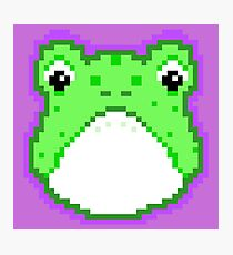 Pixel Frog - Green Photographic Print