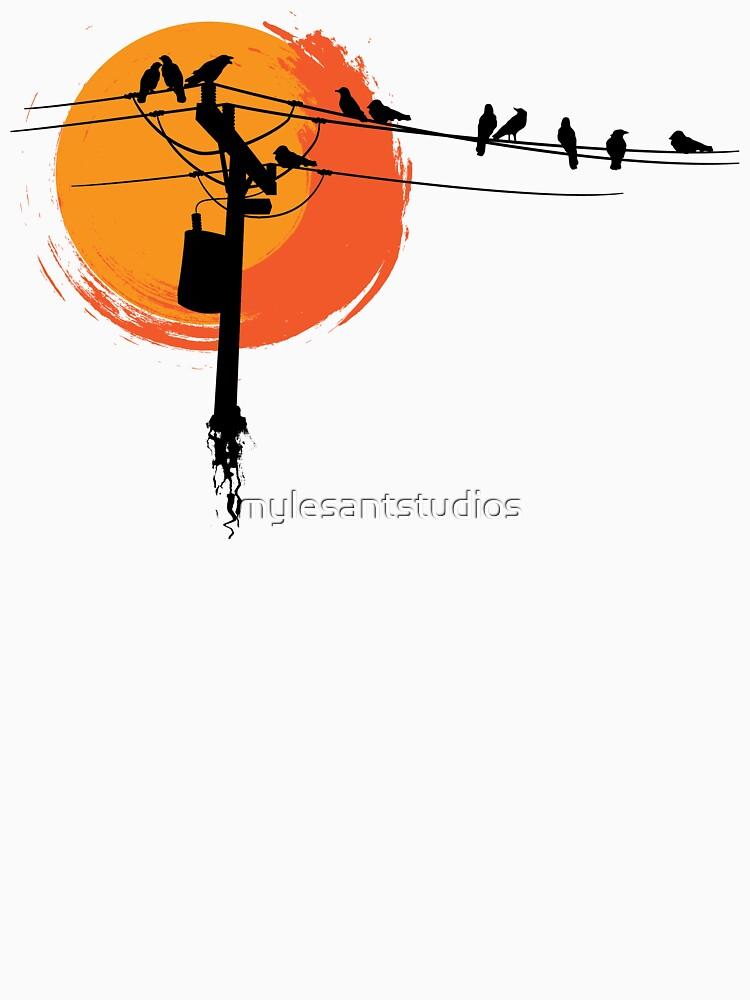 Birds on Wires with Sunset von mylesantstudios