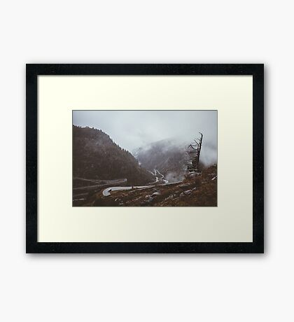 Cars and Curves Framed Print