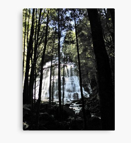 Nelson Falls Canvas Print