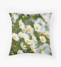 field of daisies  Throw Pillow