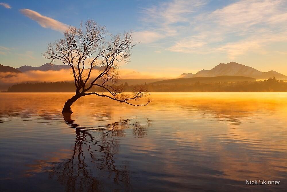 Wanaka Sunrise by Nick Skinner