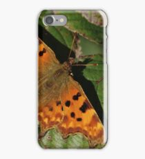 Comma On Dying Leaf iPhone Case/Skin