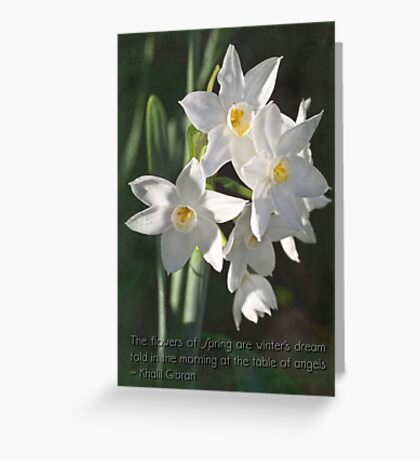 Sweet harbingers of spring Greeting Card
