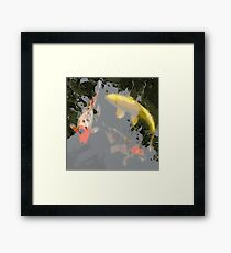 Coy Colours Framed Print