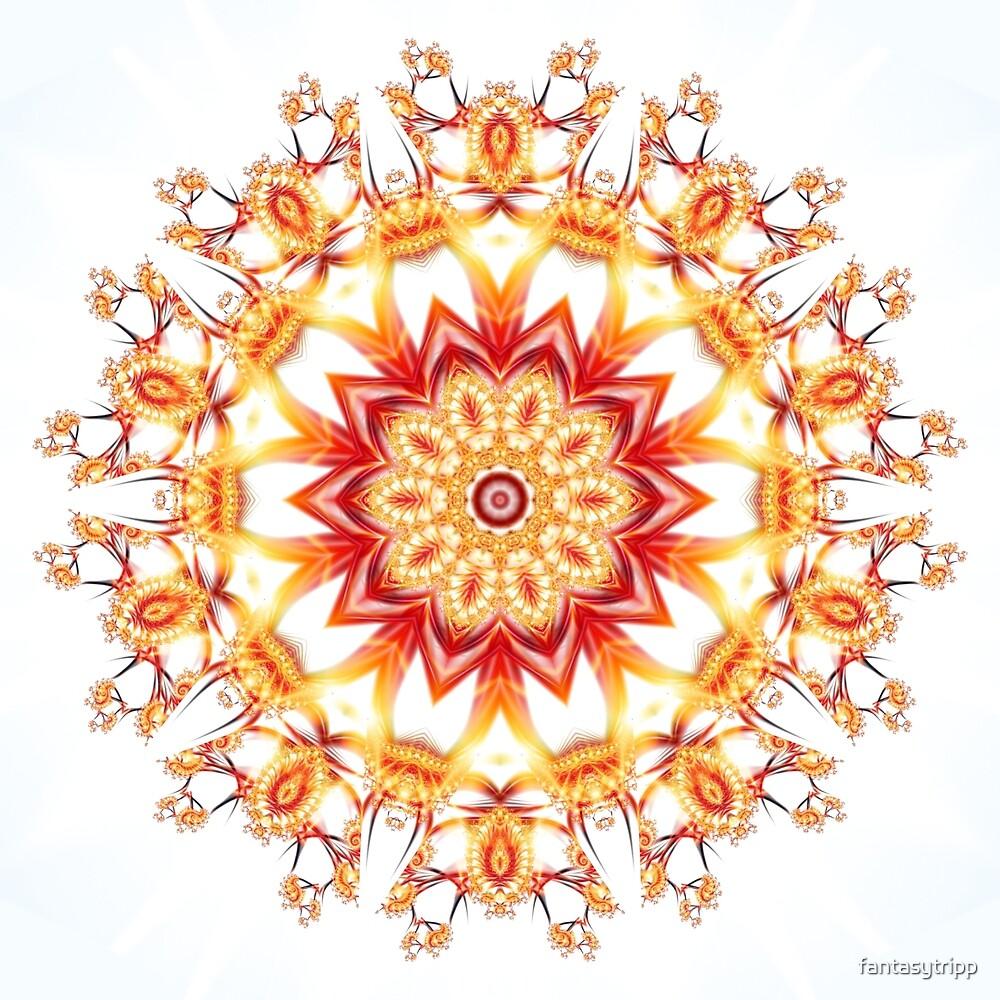 Fractal Flower Kaleidoscope\