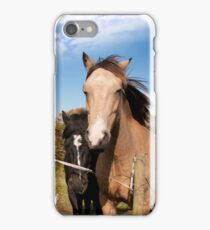 a pair of beautiful Irish horses and ancient round tower iPhone Case/Skin
