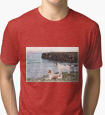 beach view with two dogs Tri-blend T-Shirt