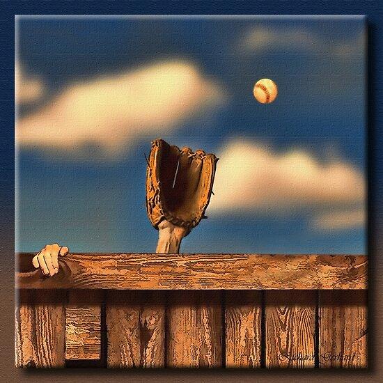 The Home Run by Richard  Gerhard