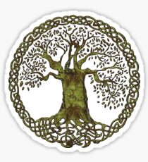 CELTIC KNOT TREE OF LIFE - olive grunge Sticker