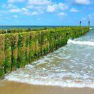 breakwaters on the beach, northsea in Domburg Holland by 7horses