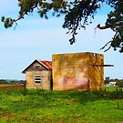 Country Victoria Farm Buildings by Ronald Rockman