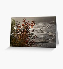 Riverbank Color -  Greeting Card