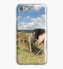 pair of Irish horses and ancient round tower iPhone Case/Skin