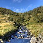 A Scottish Stream by Jamie  Green