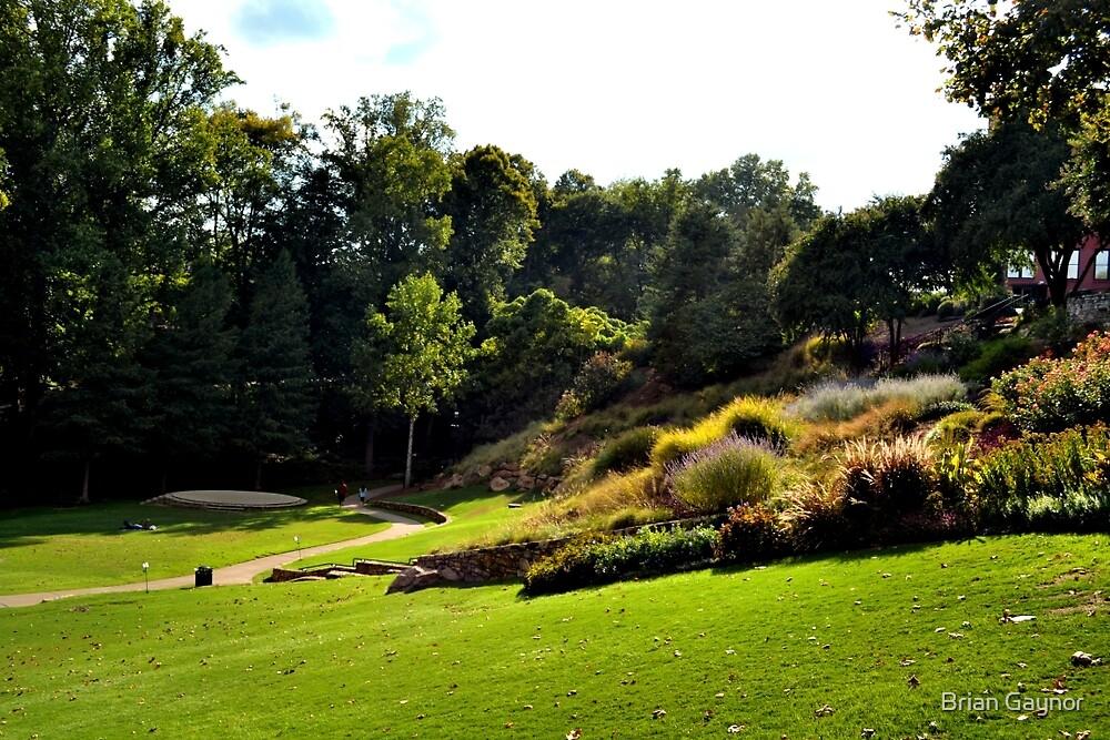 Falls Park on the Reedy by Brian Gaynor