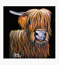 HIGHLAND COW ' JOCK ' By Shirley MacArthur Photographic Print